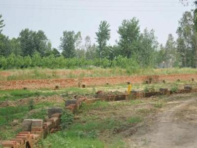 Gallery Cover Image of  Sq.ft Residential Plot for buy in Sector 56 for 42801000