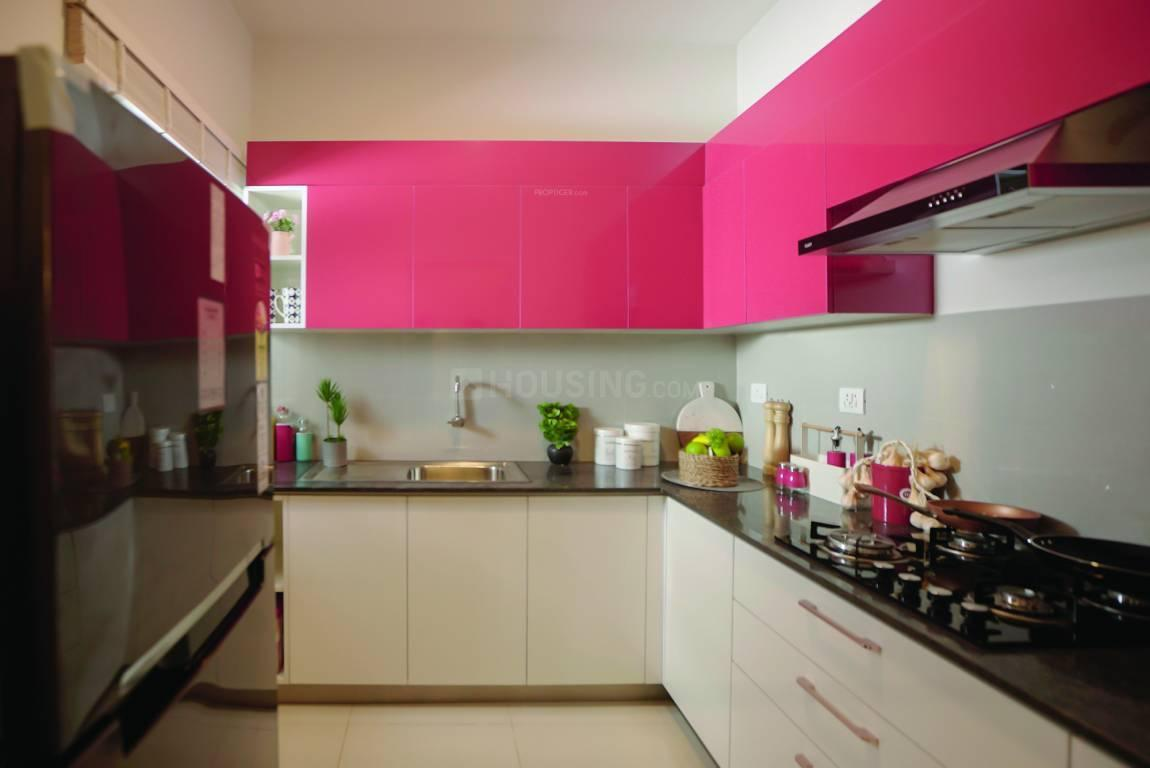 Kitchen Image of 891 Sq.ft 2 BHK Apartment for buy in Kalapatti for 3700000