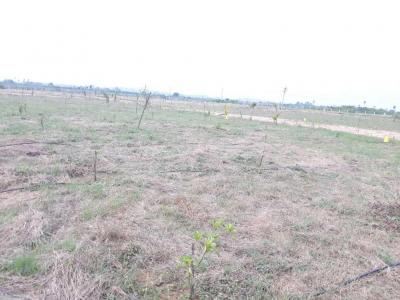 Gallery Cover Image of  Sq.ft Residential Plot for buy in Patancheru for 1300000