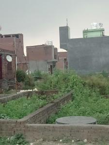 540 Sq.ft Residential Plot for Sale in Sangam Vihar, New Delhi