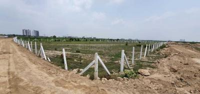 11000 Sq.ft Residential Plot for Sale in Sector 150, Noida