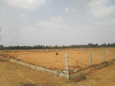 Gallery Cover Image of  Sq.ft Residential Plot for buy in Kodigehalli for 838000