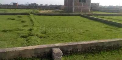 1700 Sq.ft Residential Plot for Sale in Ali Ganj, Gaya