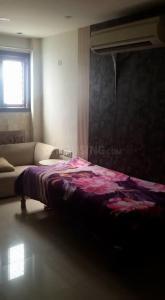 Living Room Image of PG 3806793 Kishan Ganj in Kishan Ganj