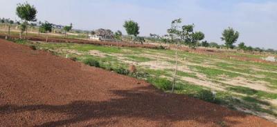 1500 Sq.ft Residential Plot for Sale in Ramamurthy Nagar, Nellore