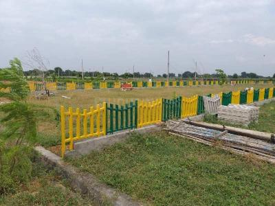30000 Sq.ft Residential Plot for Sale in Bakrol, Anand