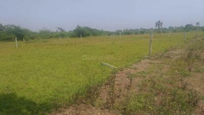 Gallery Cover Image of  Sq.ft Residential Plot for buy in Tarapur for 349000