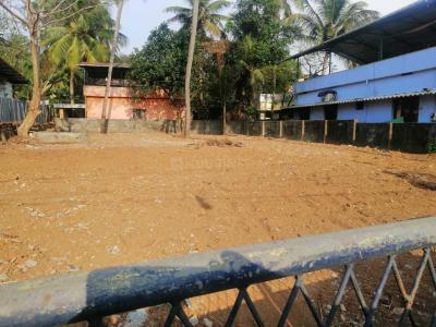 4356 Sq.ft Residential Plot for Sale in Mannuthy, Thrissur