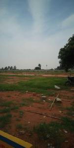 Gallery Cover Image of  Sq.ft Residential Plot for buy in Bidrahalli for 3000000