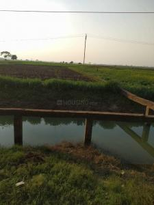 13610 Sq.ft Residential Plot for Sale in Mithapur, Patna