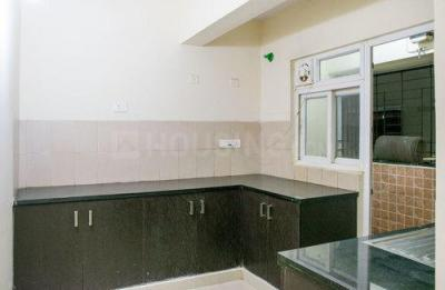 Kitchen Image of Mjr Platina in Hongasandra