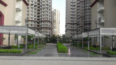 Gallery Cover Image of 980 Sq.ft 2 BHK Apartment for rent in Noida Extension for 10000