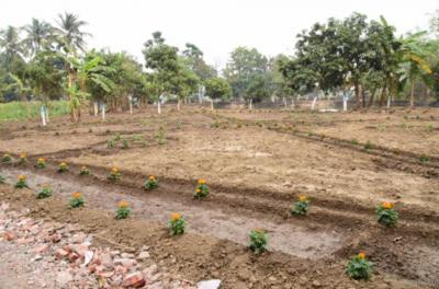 Gallery Cover Image of  Sq.ft Residential Plot for buy in Barrackpore for 1100000