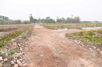 Gallery Cover Image of  Sq.ft Residential Plot for buy in Barrackpore for 1250000