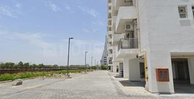 Gallery Cover Image of 1190 Sq.ft 2 BHK Apartment for rent in Sector 66 for 38000