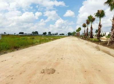 545 Sq.ft Residential Plot for Sale in Dunda, Raipur