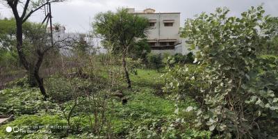 Gallery Cover Image of  Sq.ft Residential Plot for buy in Gandhinagar for 3750000