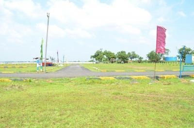 Gallery Cover Image of  Sq.ft Residential Plot for buy in Tambaram for 525000