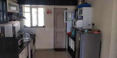 Gallery Cover Image of 1250 Sq.ft 2 BHK Apartment for rent in Wadgaon Sheri for 26000