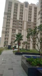 Gallery Cover Image of 1650 Sq.ft 3 BHK Apartment for rent in Sector 102 for 18000