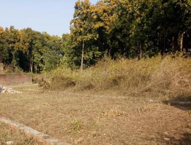 1200 Sq.ft Residential Plot for Sale in Manduwala, Dehradun