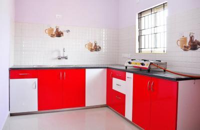 Kitchen Image of PG 4642034 Mahadevapura in Mahadevapura