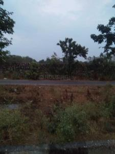 Gallery Cover Image of  Sq.ft Residential Plot for buy in Jagatpura for 2400000