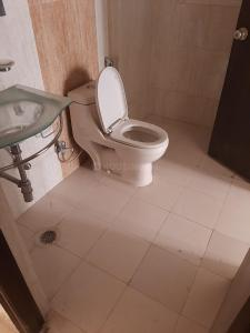 Common Bathroom Image of 2490 Sq.ft 4 BHK Apartment for buy in Phase 2 for 7500000