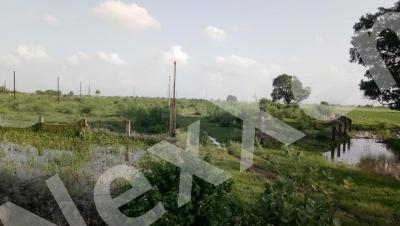Gallery Cover Image of  Sq.ft Residential Plot for buy in Kolar Road for 324000