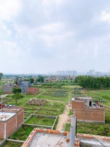 900 Sq.ft Residential Plot for Sale in Sector 123, Noida
