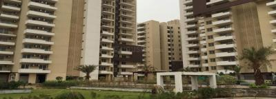 Gallery Cover Image of 4200 Sq.ft 4 BHK Apartment for rent in Sector 53 for 78000