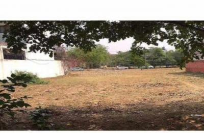316 Sq.ft Residential Plot for Sale in DLF Phase 3, Gurgaon