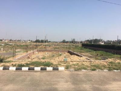 Gallery Cover Image of  Sq.ft Residential Plot for buy in Sector 42 for 34597650
