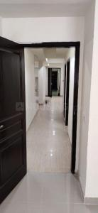 Gallery Cover Image of 4700 Sq.ft 4 BHK Apartment for rent in Jaypee Greens Augusta Town Homes, Sector 128 for 110000