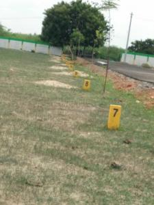 Gallery Cover Image of  Sq.ft Residential Plot for buy in Thirunindravur for 1209600