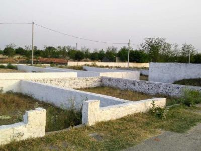 Gallery Cover Image of 1200 Sq.ft Residential Plot for buy in Murshadpur for 1500008