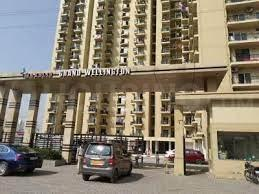Gallery Cover Image of 615 Sq.ft 1 BHK Apartment for rent in Maxblis Taj Wellington, Sector 75 for 14000