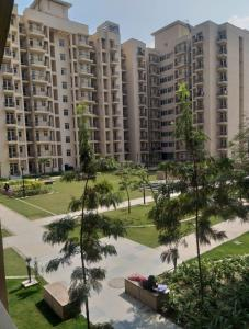 Gallery Cover Image of 1552 Sq.ft 3 BHK Apartment for rent in Sector 33 for 30000