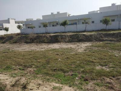 502 Sq.ft Residential Plot for Sale in Jagdishpur, Sonepat