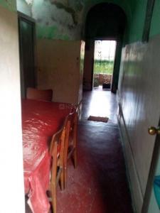 Living Room Image of PG 4442402 Kalighat in Kalighat