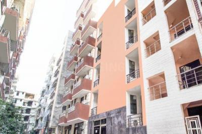 Building Image of Oyo Life Ol_grg1978 in DLF Phase 3