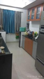 Gallery Cover Image of 1050 Sq.ft 2 BHK Apartment for rent in Magarpatta Iris, Magarpatta City for 25000