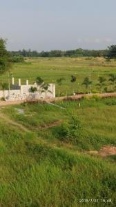 1440 Sq.ft Residential Plot for Sale in Rasapunja, Kolkata