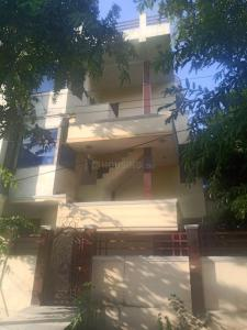 Gallery Cover Image of 4000 Sq.ft 5 BHK Independent House for buy in Sector 48 for 20000000