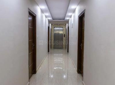 Passage Image of Zolo Maple Unisex in Sadduguntepalya