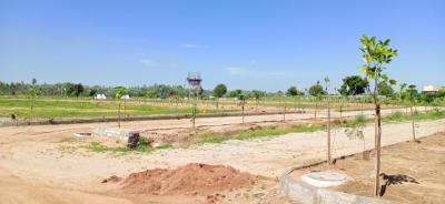 121 Sq.ft Residential Plot for Sale in Shamshabad, Hyderabad
