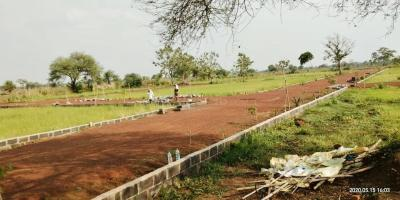 1000 Sq.ft Residential Plot for Sale in Naya Raipur, Raipur