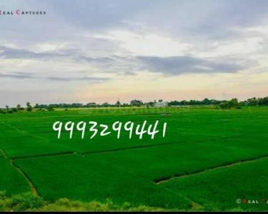 20000 Sq.ft Residential Plot for Sale in Indore GPO, Indore