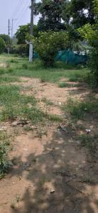 Gallery Cover Image of  Sq.ft Residential Plot for buy in Sector 39 for 17388000
