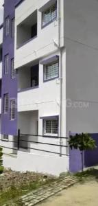 Gallery Cover Image of 380 Sq.ft 1 RK Apartment for rent in Mohammed Wadi for 5500